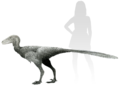 Life reconstruction of Stenonychosaurus.png