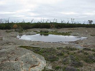 Frank Hann National Park - Image: Lilian Stokes Rockpools 1 FHNP V 2010