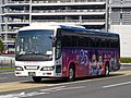 Limousine Bus 57-70455R2 Magical Fantasy 2008.jpg