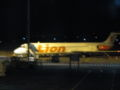 Lion Air.jpg