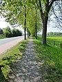 Lippstadt P1010586 (8709876042).jpg