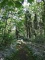 Loch Leven Castle Island - geograph.org.uk - 454060.jpg