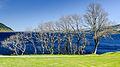 Loch Ness near Urquhart Castle.jpg