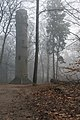 Lochemse Berg, uitkijktoren Belvedère IMG 3183 2020-01-01 10.13.jpg