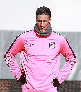 Image illustrative de l'article Fernando Torres