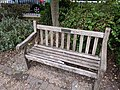 Long shot of the bench (OpenBenches 117-1).jpg