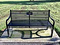 Long shot of the bench (OpenBenches 882).jpg