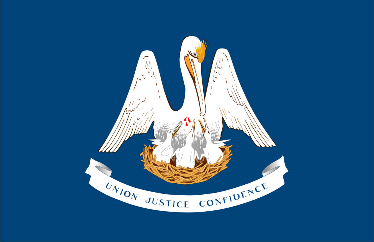 Http Commons Wikimedia Org Wiki File Louisiana State Flag Png