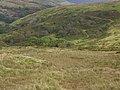 Lower slopes - geograph.org.uk - 568309.jpg