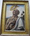 Luca signorelli (attr.), san girolamo penitente in estasi, 1505-10 ca. 01.JPG