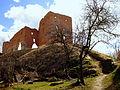 Ludza Castle West 01.JPG