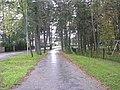 Mähe tee - panoramio - Aulo Aasmaa (8).jpg