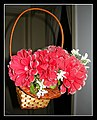 MAGIC fLOWER bASKET (4587453554).jpg