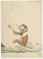Macacus erythraeus - 1818-1842 - Print - Iconographia Zoologica - Special Collections University of Amsterdam - UBA01 IZ20000073.tif