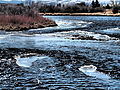 Madison River near Ennis January 2015 18.JPG