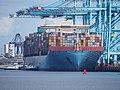 Magleby Maersk (ship, 2014) IMO 9619957 Port of Rotterdam pic1.JPG