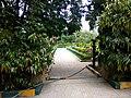 Mahatma Gandhi Park, Shivaji Nagar, Bengaluru, Karnataka IMG 20180611 110503.jpg