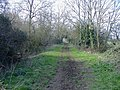 Malmesbury branch trackbed - geograph.org.uk - 379105.jpg