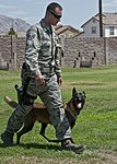 Man's best friend keeps Nellis safe 150629-F-UN699-016.jpg