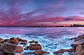 Manly Sunset (7903768656).jpg
