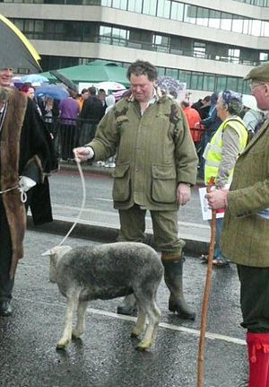 Mark Stephens (solicitor) - Stephens exercising his right as a Freeman of the City of London, by driving a sheep over London Bridge in 2009