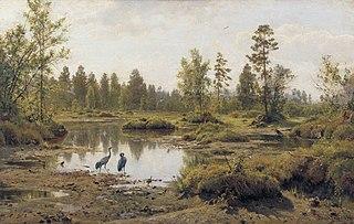Marsh. Cranes