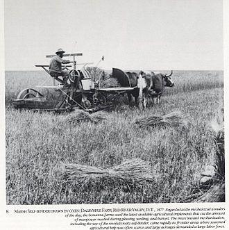 Casselton, North Dakota - Marsh Self Binder at work on the Dalrymple Farm, 1877