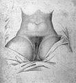 "Maygrier ""Nouvelles demonstrations"", 1825 Wellcome L0006193.jpg"