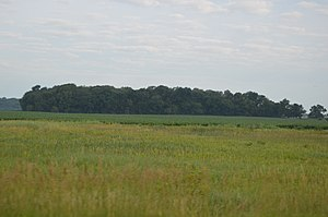 McCune Mound and Village Site - Image: Mc Cune Village near Sterling