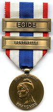 Medal for the Military Protection of the Territory.jpg