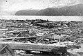 Meiji-Sanriku earthquake 06.jpg