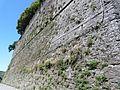 Melazzo-castello4.jpg