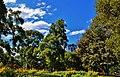 Melbourne, Australia - panoramio (51).jpg