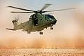 Merlin Helicopter Lands in Californian Desert During Ex Merlin Vortex MOD 45150793.jpg