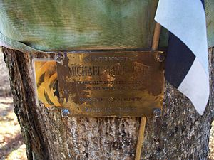 Wales Rally GB - This is a memorial on the tree for Michael Park where he lost his life.