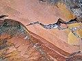 Microsyenite dike (Precambrian; Michipicoten River Bridge South roadcut, south of Wawa, Ontario, Canada) 21 (47924814331).jpg