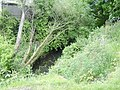 Mill Burn, Yoker - geograph.org.uk - 470001.jpg