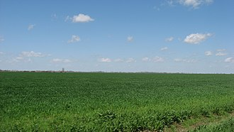 Missouri Bootheel - A typical Bootheel scene: the Mississippi floodplain in southern Pemiscot County