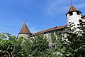 Morat - panoramio (4).jpg