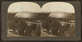 Mormon Tabernacle, Salt Lake City, Utah, U.S.A, from Robert N. Dennis collection of stereoscopic views.png