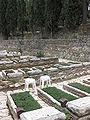 Mount Herzl - Independence War Plot IMG 1270.JPG