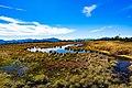 Mount Naeba (30610781306).jpg