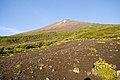 Mt.Fuji from Subashiri Trail 02.jpg