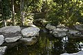 Mt Annan Botanic Garden - panoramio (9).jpg