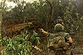 NARA 111-CCV-569-CC44326 4th Infantry Division soldiers moving toward hut 1967.jpg