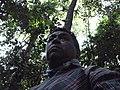 NA SELVA AMAZONIA - panoramio.jpg