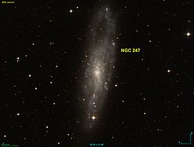 Image illustrative de l'article NGC 247