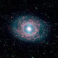 NGC 3351 (M95).jpg