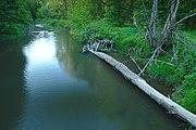 NPR Ramena řeky Moravy.jpg