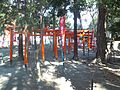Nagahama-hachiman-gû Shrine - Toriis of Inari-jinja Shrine.jpg